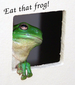 Brian Tracy - Eat that frog